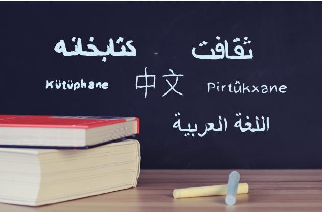 Linguistic minorities